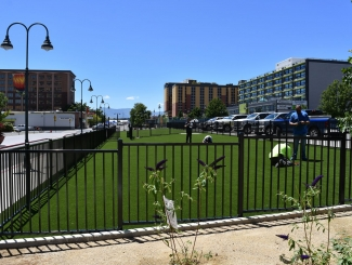 project-city-of-reno-downtown-dog-park-03