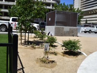 project-city-of-reno-downtown-dog-park-04
