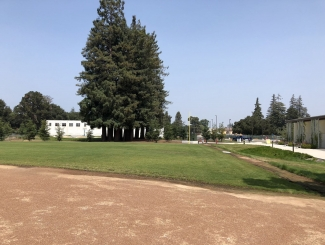 project-va-hospital-menlo-park-landscape-build-05